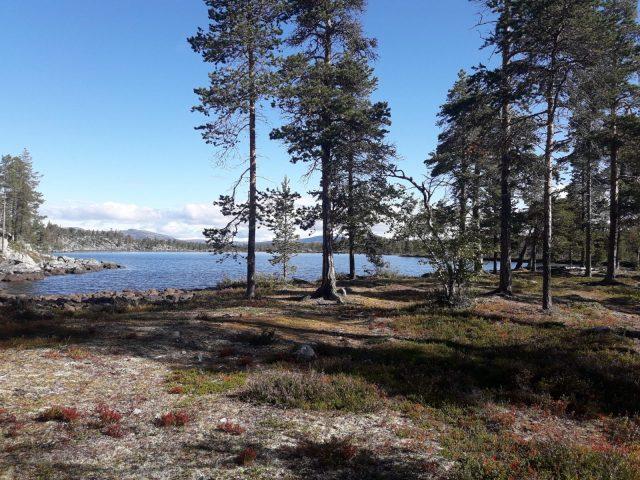 Åre – Fjällnäs – Grövelsjön | Wandern in Schweden