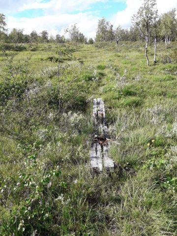 Hemavan - Klimpfjäll | Schweden